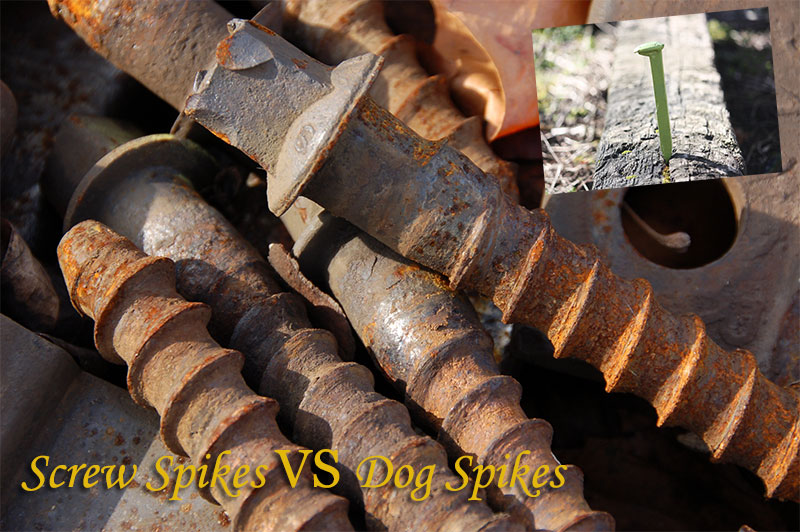 screw spikes vs dog spikes